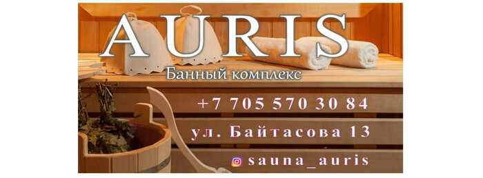 AURIS- Kazino Большой зал